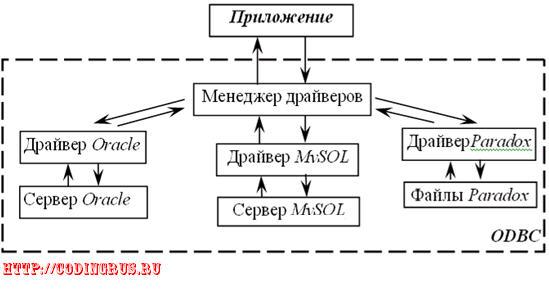 Движение информации между приложением и БД при использовании ODBC